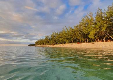 Une plage à La Réunion avec palmiers le soir